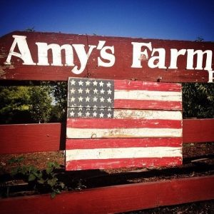 Amy's Pumpkin Patch @ Ontario | California | United States