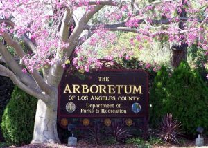 Los Angeles County Arboretum and Botanic Garden @ Arcadia | California | United States