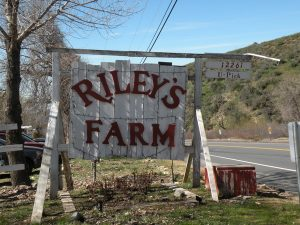 American Revolution Tour Field Trip at Riley's Farm @ Riley's Farm | Yucaipa | California | United States